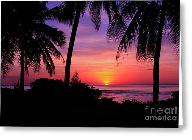 Palm Tree Sunset In Paradise Greeting Card