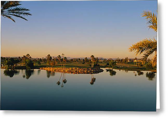 Palm Trees At The Lakeside, Phoenix Greeting Card