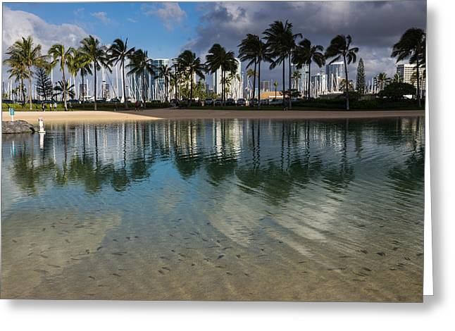 Palm Trees Crystal Clear Lagoon Water And Tropical Fish Greeting Card