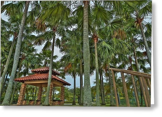 Palm Trees Greeting Card by Mario Legaspi