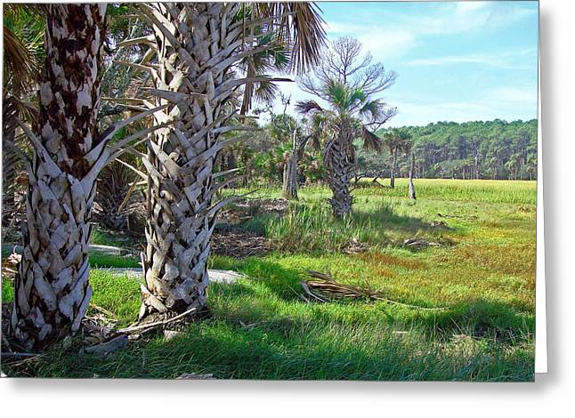 Greeting Card featuring the photograph Palm Trees On Hunting Island by Ellen Tully
