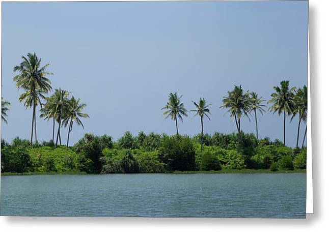 Palm Trees On Small Island Along Coast Greeting Card by Panoramic Images