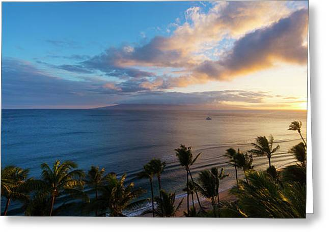 Palm Trees On The Beach At Dusk Greeting Card by Panoramic Images