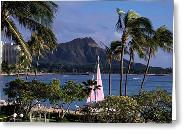Palm Trees On The Beach, Diamond Head Greeting Card by Panoramic Images