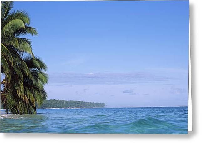Palm Trees On The Beach, Indonesia Greeting Card