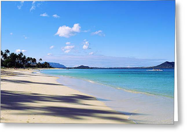 Palm Trees On The Beach, Lanikai Beach Greeting Card by Panoramic Images