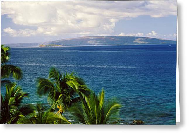 Palm Trees On The Beach, North Shore Greeting Card by Panoramic Images
