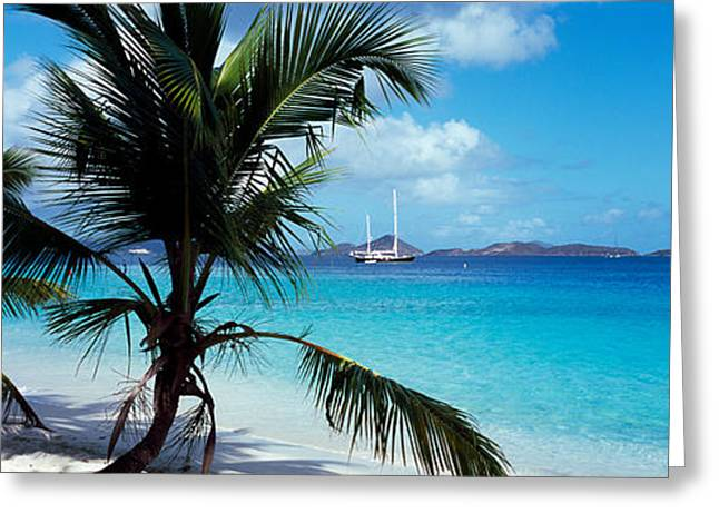 Palm Trees On The Beach, Salomon Beach Greeting Card by Panoramic Images