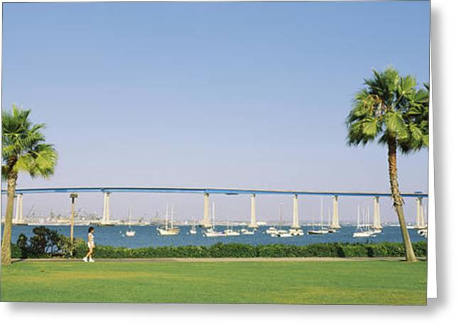 Palm Trees On The Coast With Bridge Greeting Card