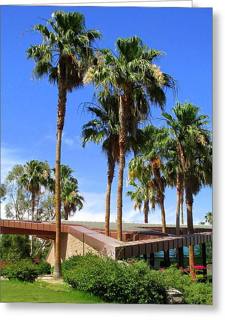 Palm Trees Through The Roof Greeting Card by Randall Weidner