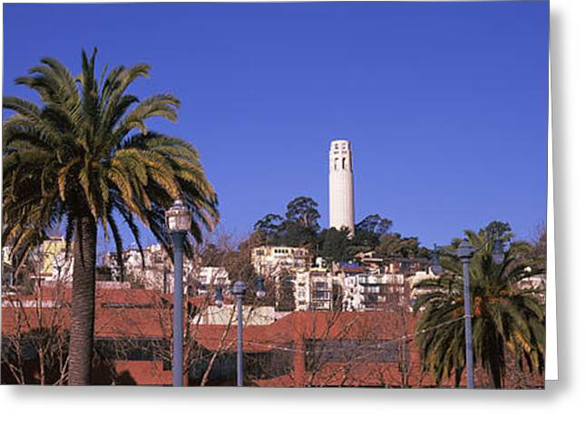 Palm Trees With Coit Tower Greeting Card by Panoramic Images