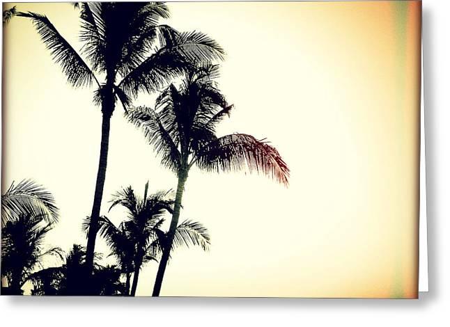 Palms At Dawn I Sunset Greeting Card