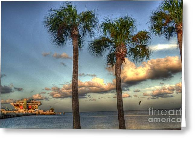 Palms At The Pier Greeting Card by Timothy Lowry