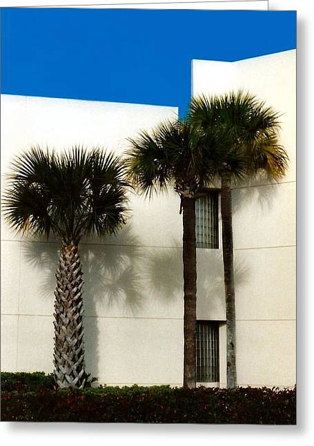 Palms Greeting Card by Bruce Lennon