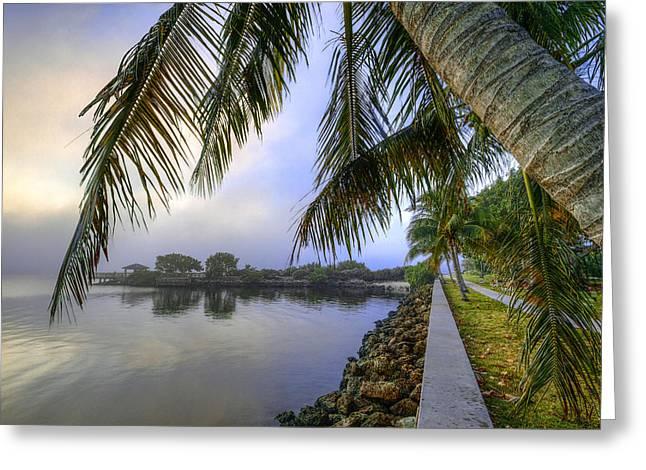 Palms Over The Waterway Greeting Card by Debra and Dave Vanderlaan