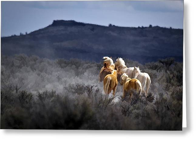 Palomino Buttes Band Greeting Card