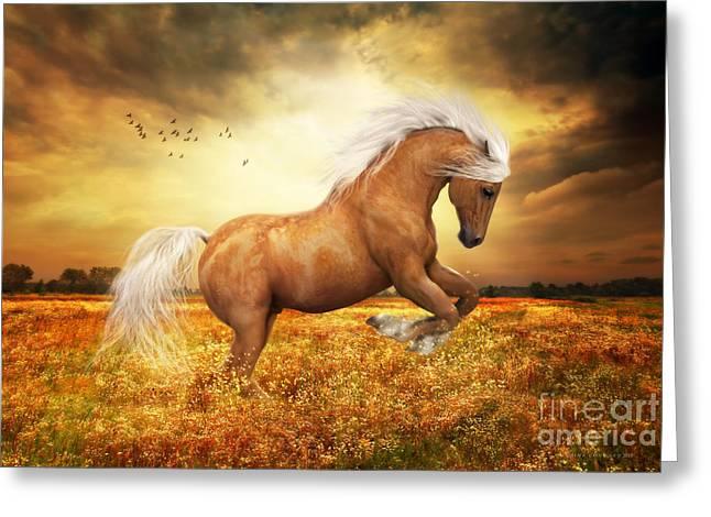 Palomino Horse Sundance  Greeting Card by Shanina Conway