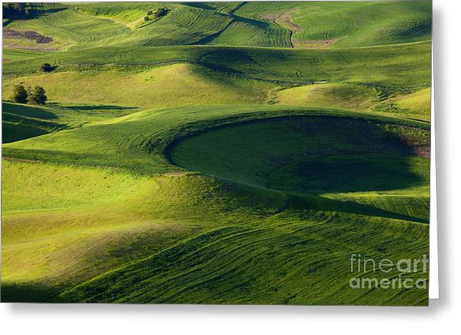 Palouse Curves Greeting Card