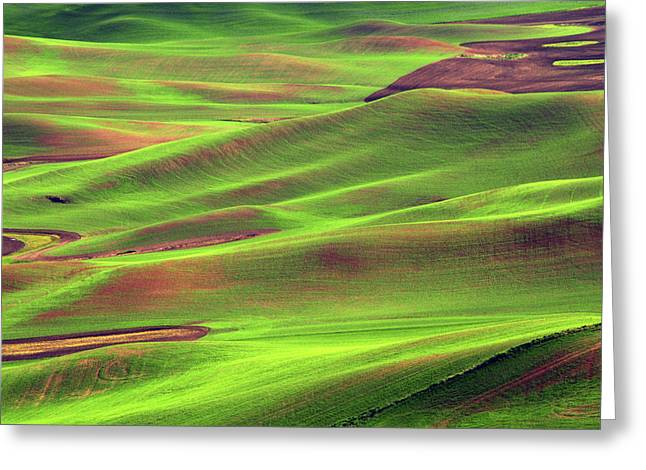 Palouse From Steptoe Butte Greeting Card by Michel Hersen