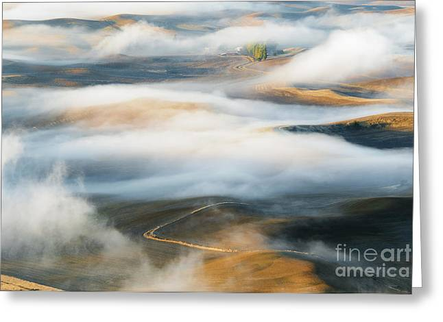 Palouse Gold Greeting Card by Mike Dawson