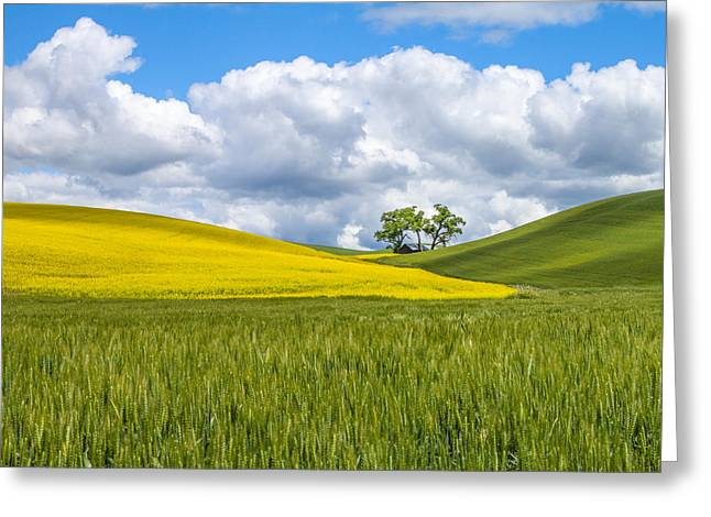 Palouse Highlights Greeting Card
