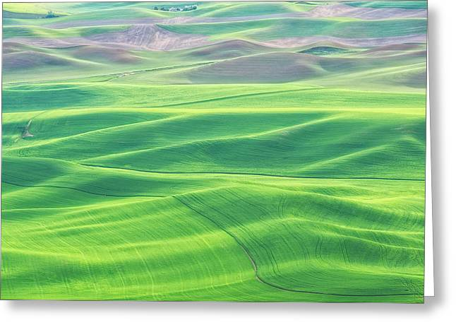 Palouse In Spring Greeting Card
