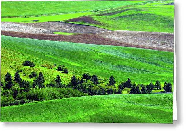 Palouse, Steptoe Butte, Cultivation Greeting Card