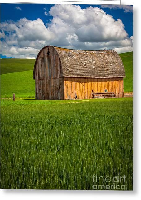 Palouse Yellow Barn Greeting Card by Inge Johnsson