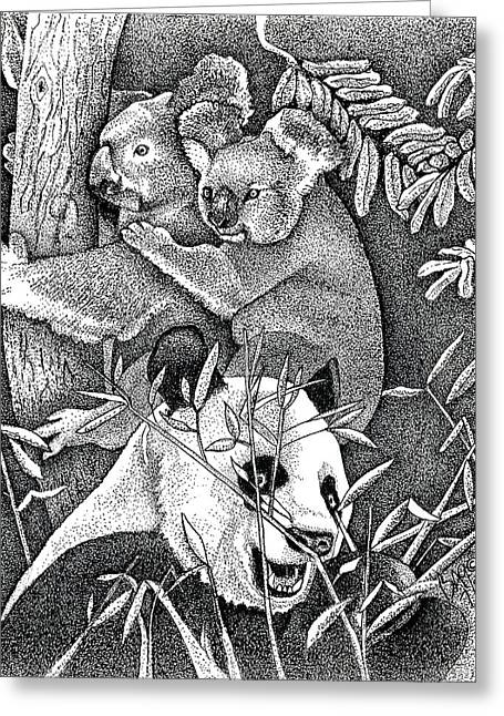 Panda And Koala Greeting Card by Brian Gilna