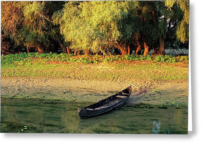 Panorama Of Channel In The Danube Delta Greeting Card by Martin Zwick