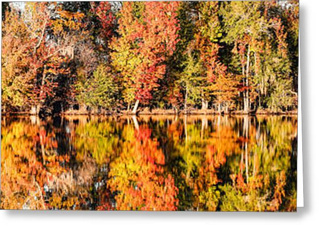 Panorama Of Fall Colors At Martin Dies Junior State Park - Jasper Piney Woods East Texas Greeting Card by Silvio Ligutti