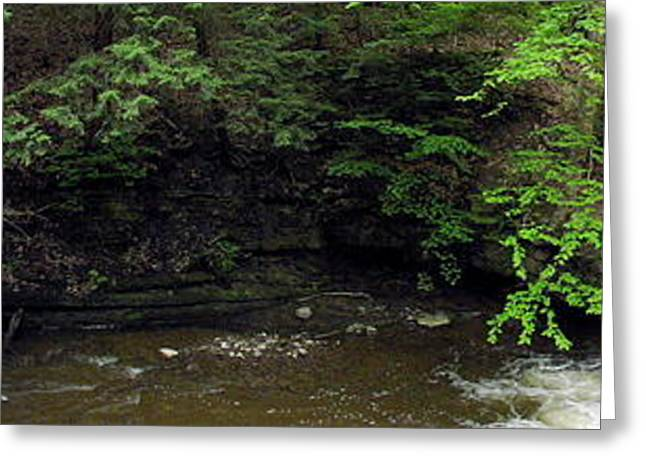 Panorama Of Wolf Creek At Letchworth State Park Greeting Card by Rose Santuci-Sofranko