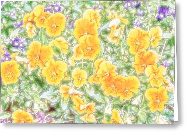 Greeting Card featuring the digital art Pansies by Photographic Art by Russel Ray Photos