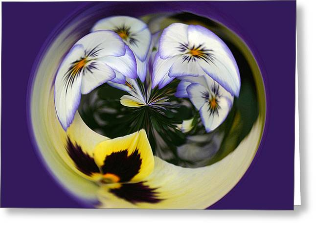 Pansy Ball Greeting Card