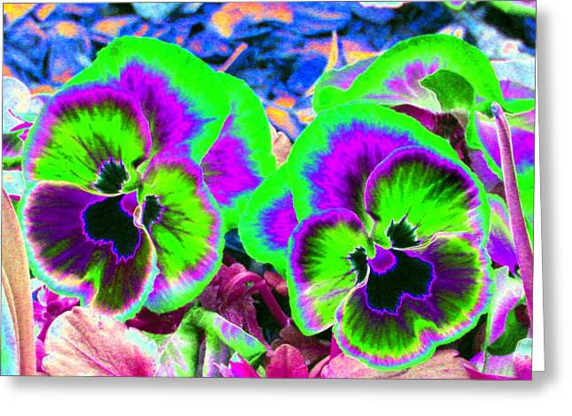 Pansy Power 60 Greeting Card