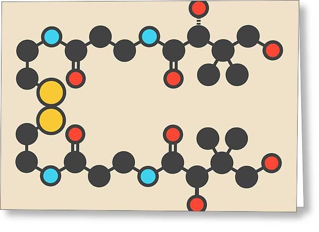 Pantethine Dimeric Vitamin B5 Molecule Greeting Card by Molekuul