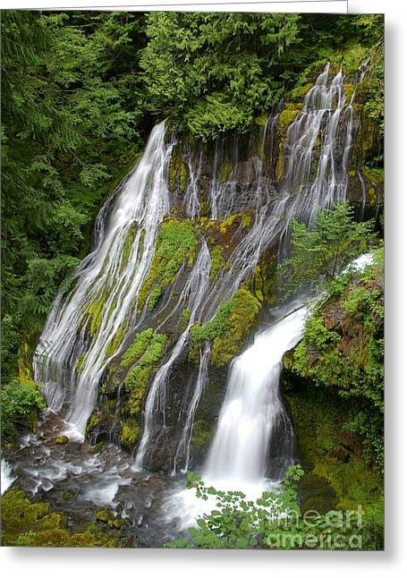 Panther Creek Falls 2- Washington Greeting Card