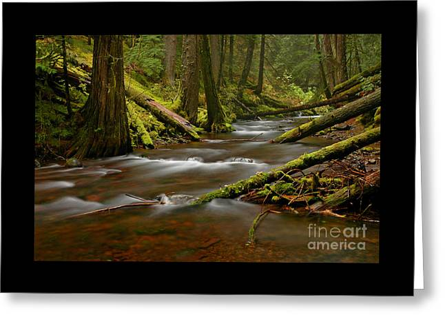 Greeting Card featuring the photograph Panther Creek Landscape by Nick  Boren