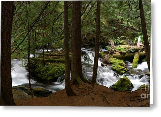 Panther Creek Panorama- Washington Greeting Card