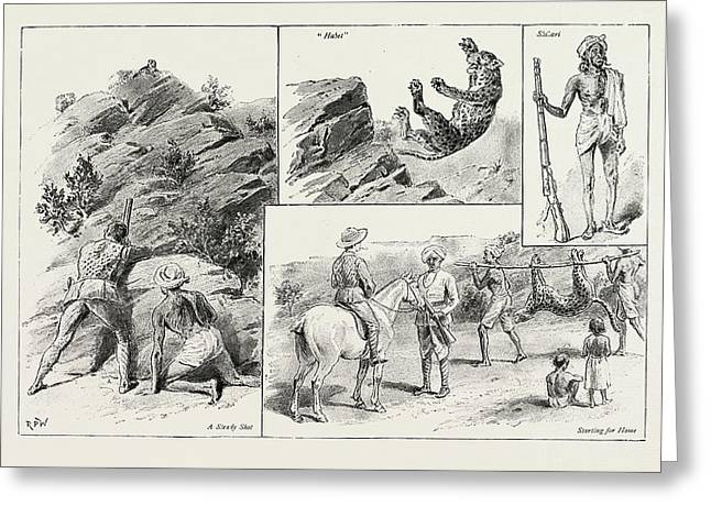 Panther Shooting In India Greeting Card