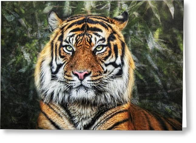 Panthera Tigris II Greeting Card by Joachim G Pinkawa