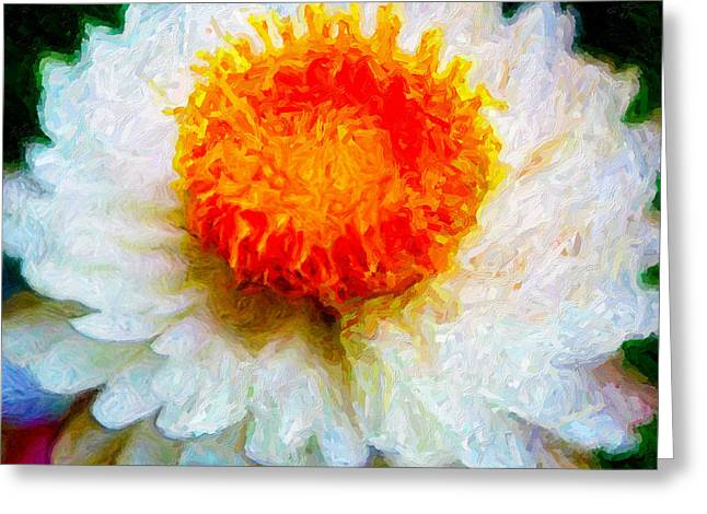 Paper Daisy Greeting Card