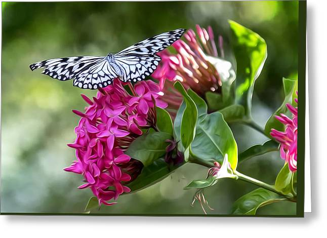 Paper Kite On Fluid Blossoms Greeting Card by Bill Tiepelman