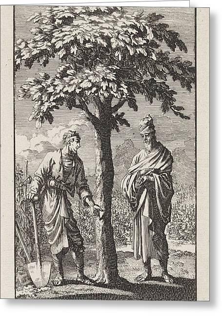 Parable Of The Barren Fig Tree, Jan Luyken Greeting Card by Jan Luyken And Wed. Pieter Arentsz & Cornelis Van Der Sys (ii)