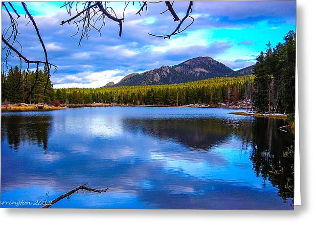 Greeting Card featuring the photograph Paradise 2 by Shannon Harrington
