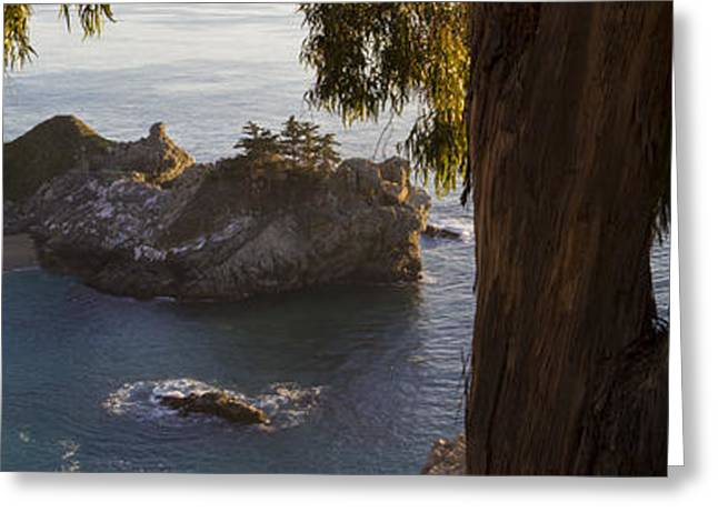 Paradise Cove Greeting Card by Brad Scott