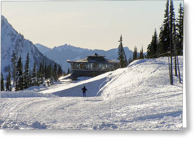 Paradise Found And Lost - Mt. Rainier Greeting Card