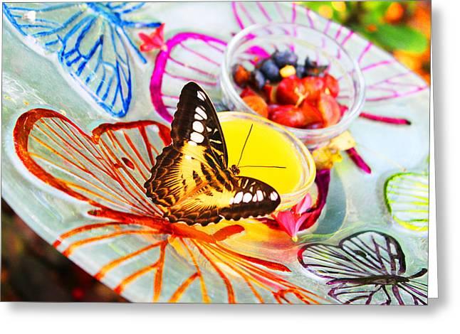 Paradise Honeydew Greeting Card