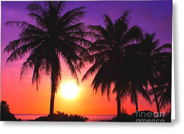 Paradise Is Waiting Greeting Card by Scott Cameron