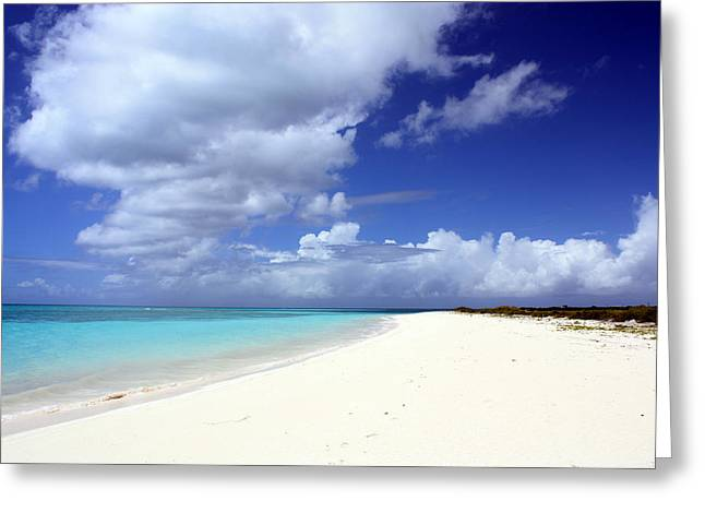 Paradise Greeting Card by Laura Hiesinger